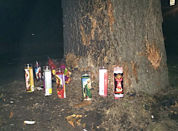 The memorial at the tree on Brush Hill Road where two people died early Friday.